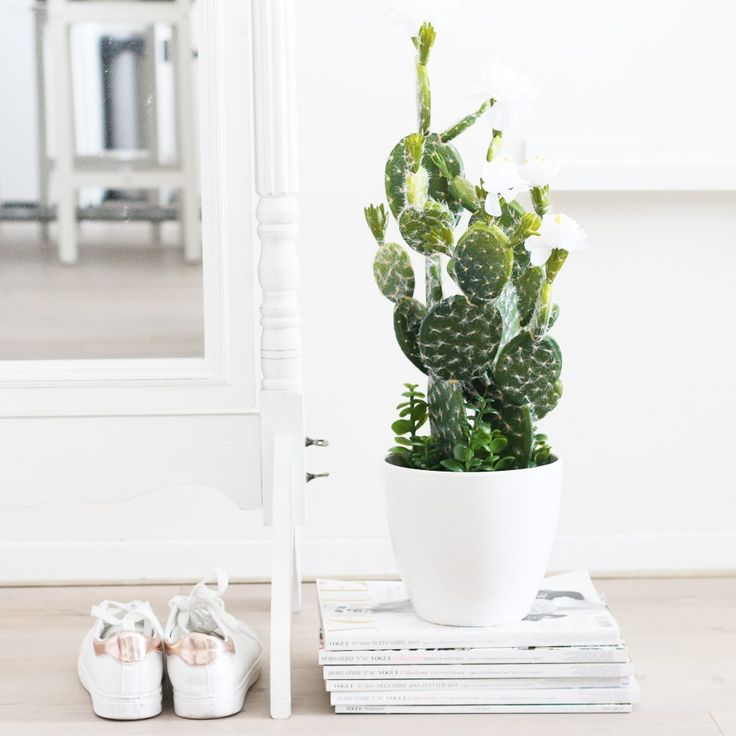 Shoes sit next to plant and magazines