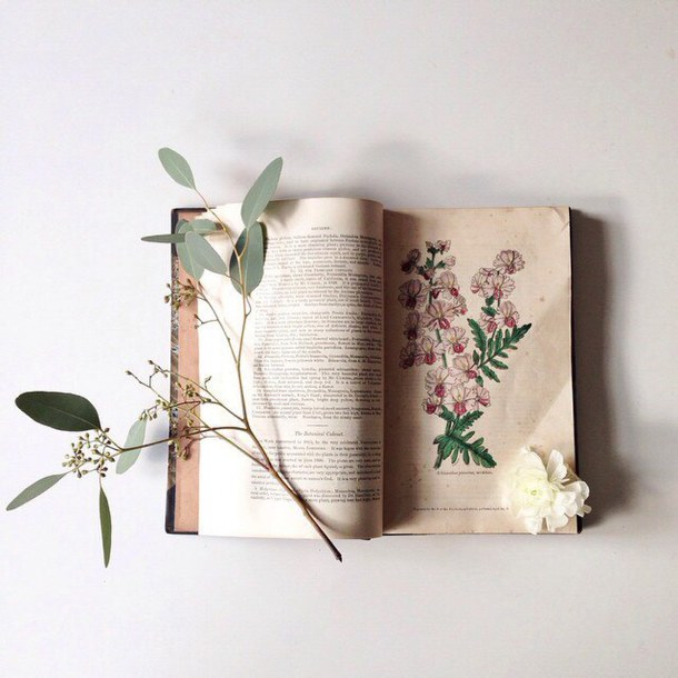 book-drawing-flowers-plants