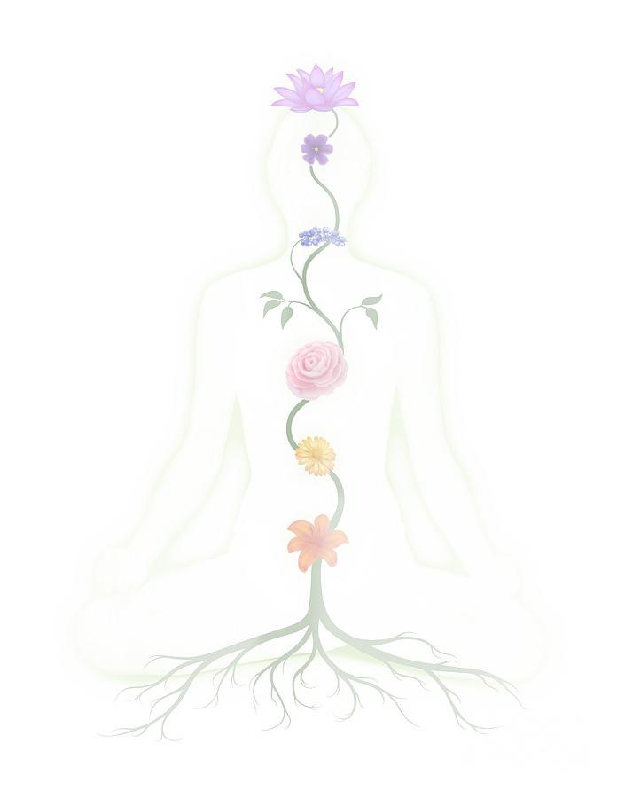 chakra interconnectedness meditation