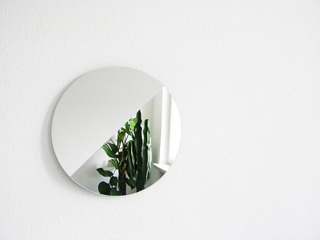 Mirror on white wall succulent reflection